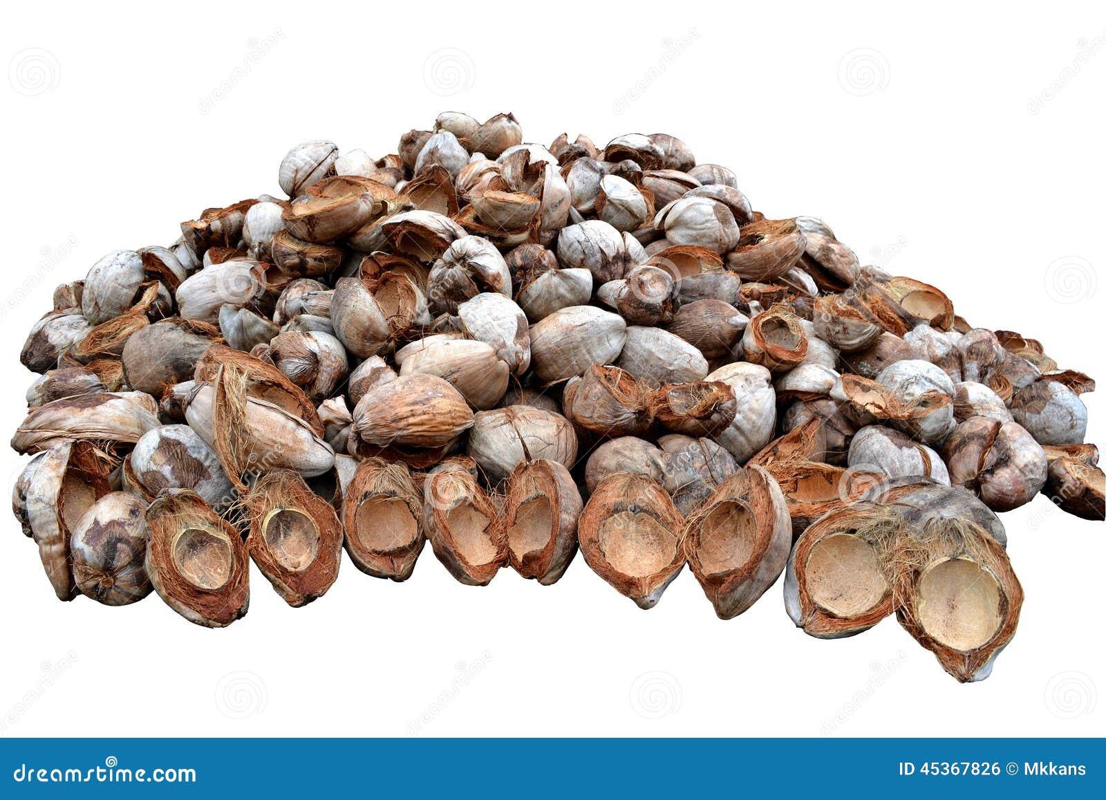 Peau de noix de coco