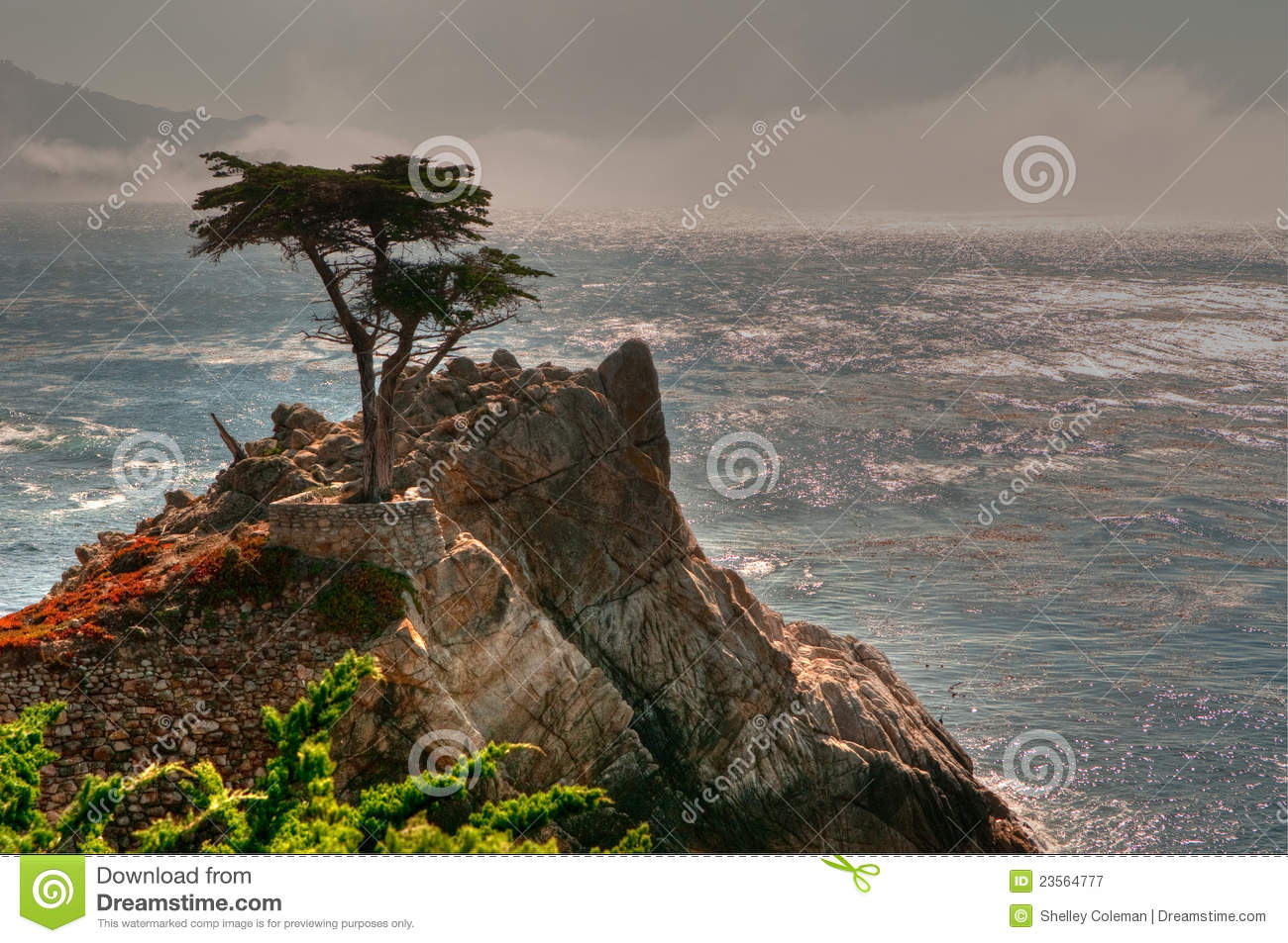 bet365 cash out advert bet365 financial review ... Stock Photography: Pebble Beach Lone Tree