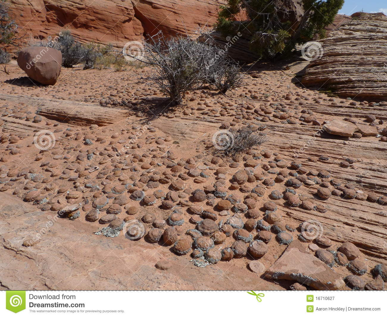 Download Pebble Rock Garden Stock Image. Image Of Nature, Natural   16710627