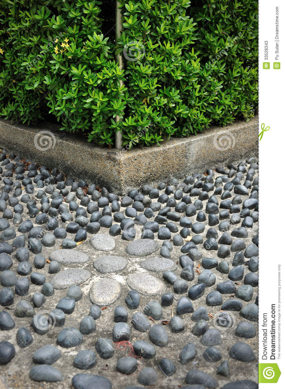 Pebble Stone Path Stock Photos Image 33528343