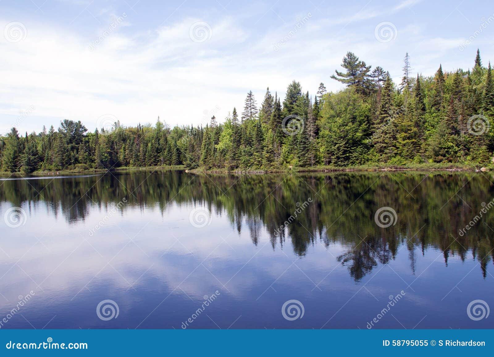 Peck Lake, Algonquin Provincial Park 4