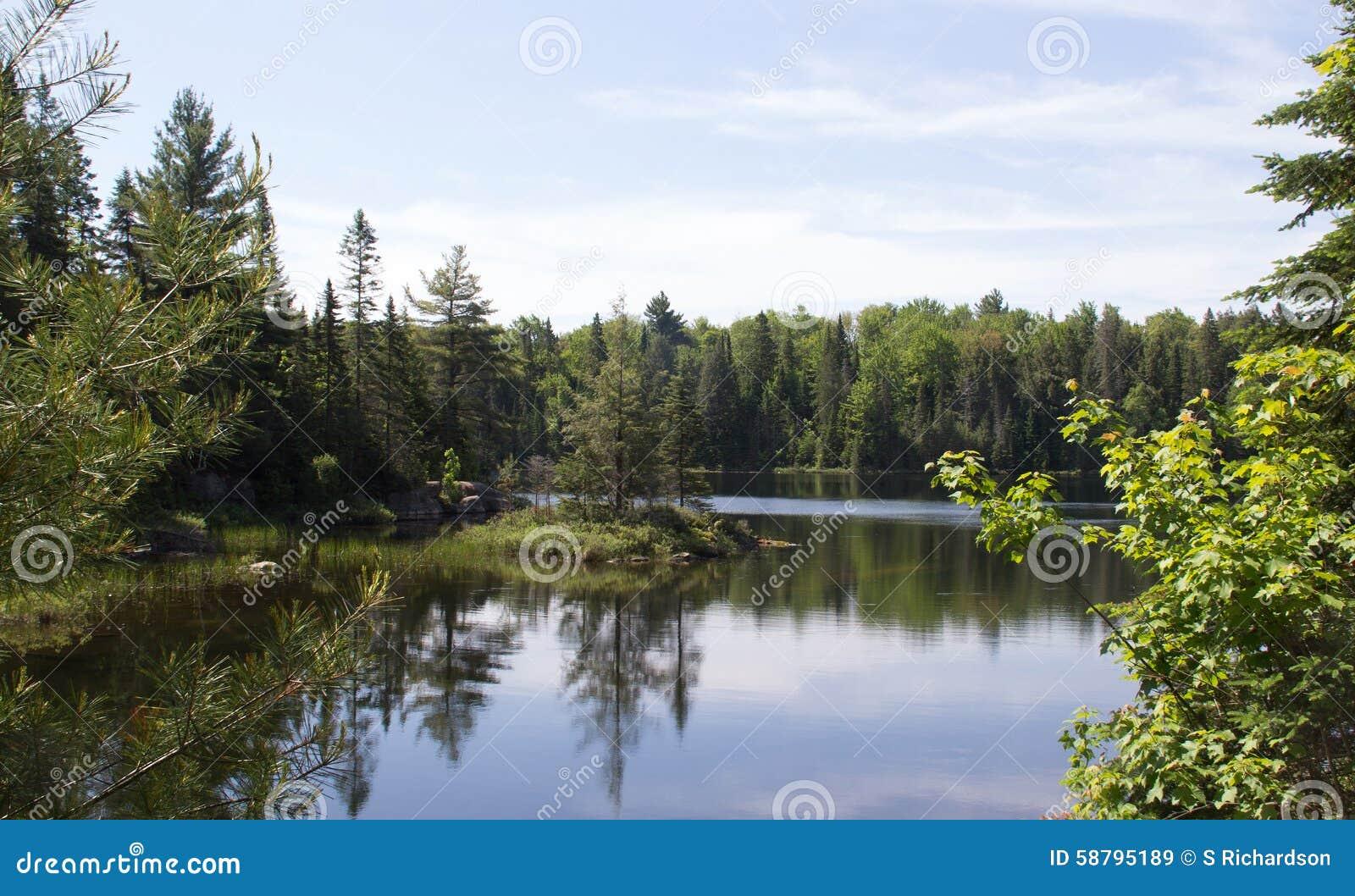 Peck Lake, parque provincial 3 do Algonquin