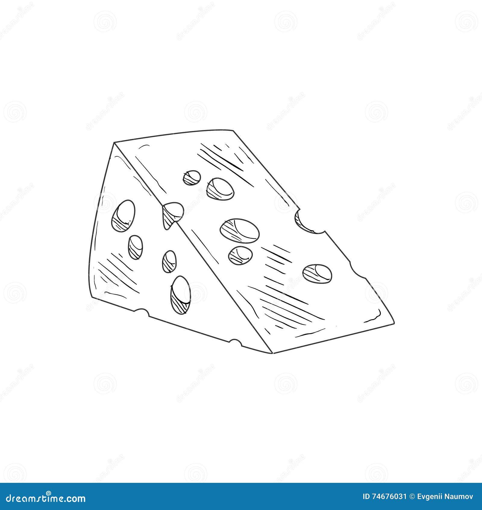 Pedazo de bosquejo detallado realista dibujado mano del queso suizo en estilo simple con clase del lápiz en el fondo blanco