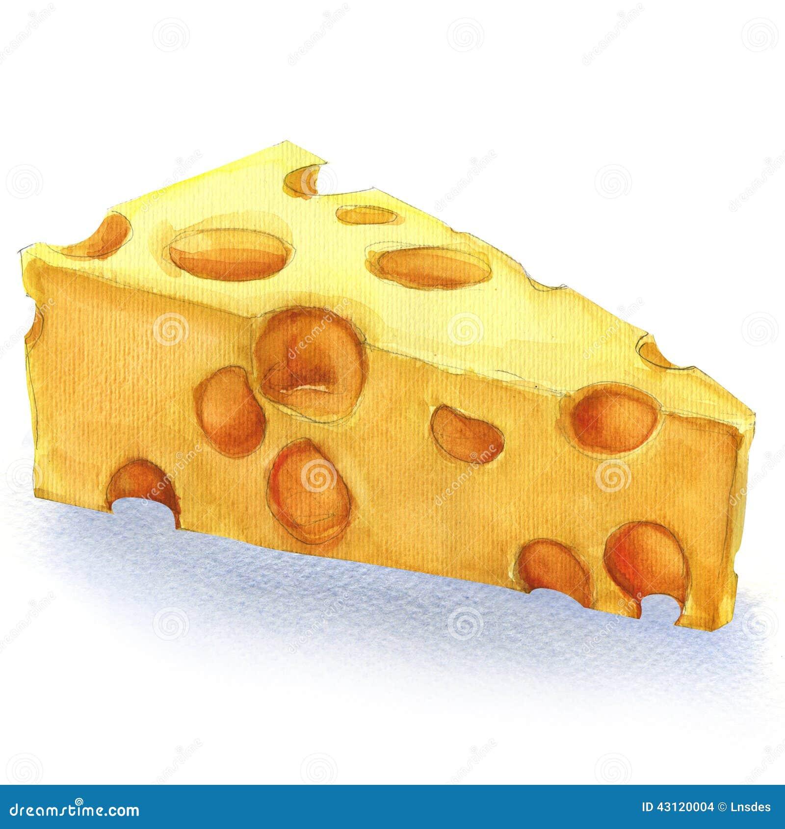 Pedazo de la acuarela de queso aislado