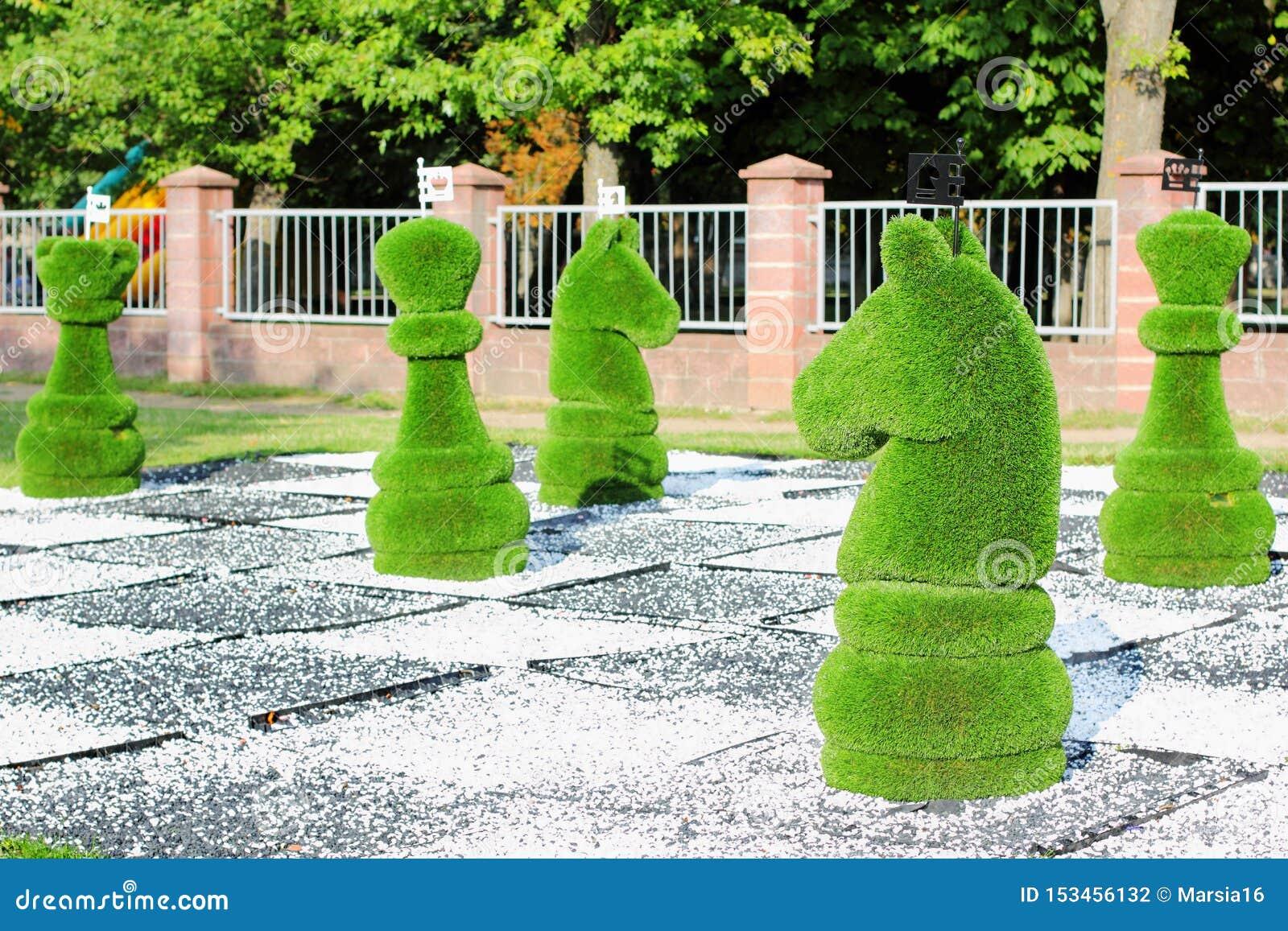 Pedazos de ajedrez grandes adornados con la hierba verde