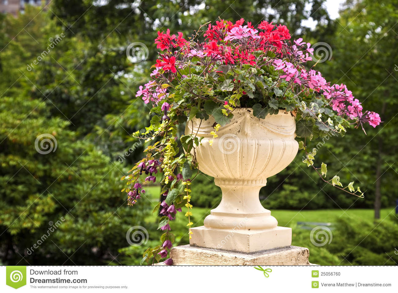 Dreamstime.com & Pedestal Garden Planters stock photo. Image of green - 25056760