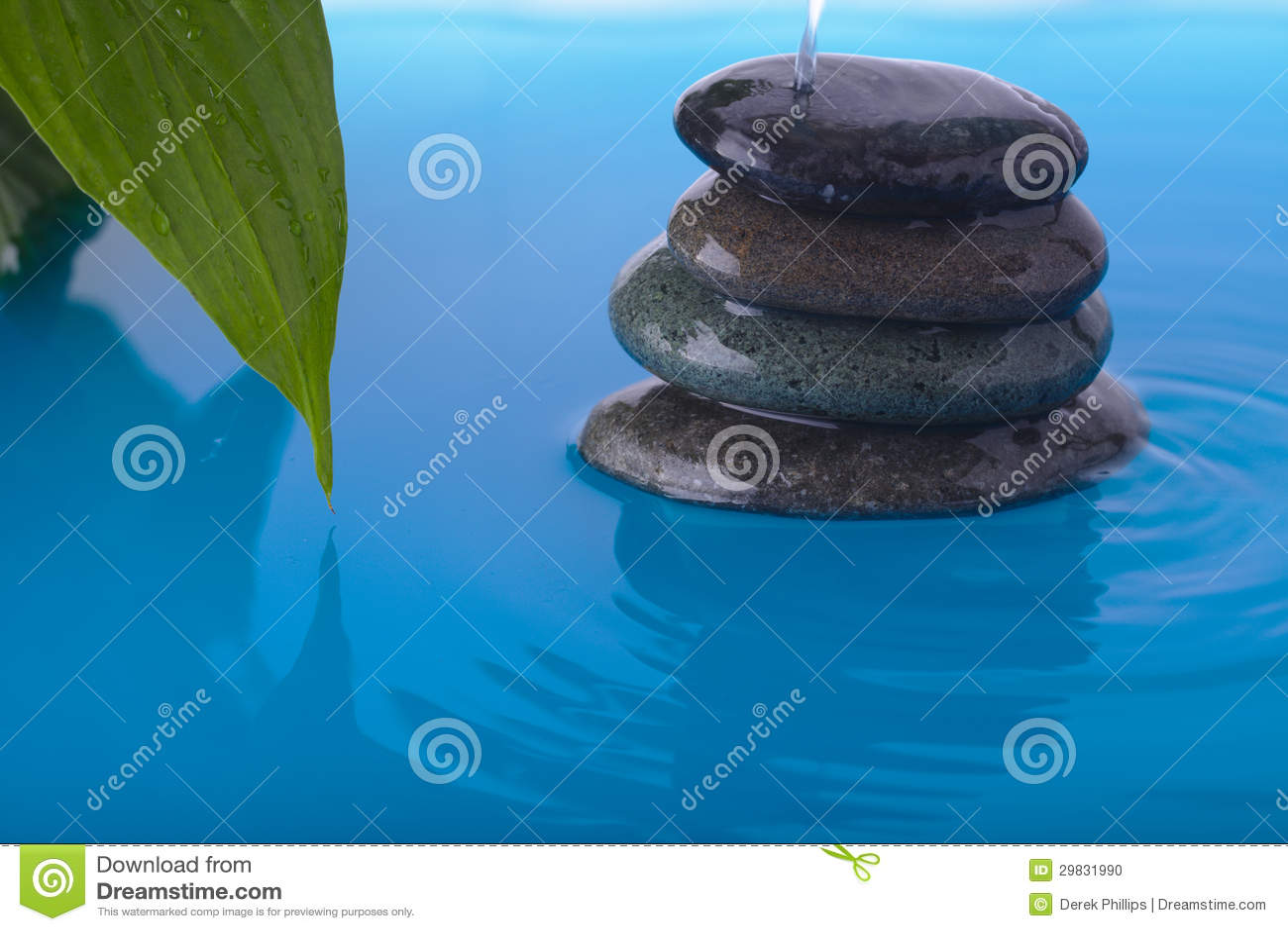 A água de pedra do zen derramam e a folha da planta da paz