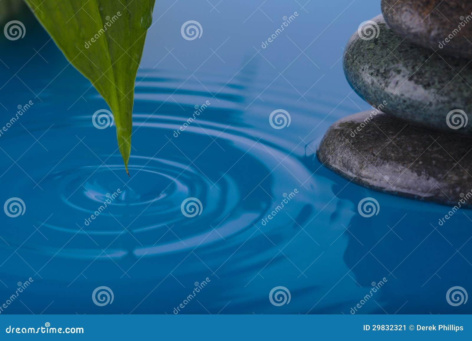 Folha de pedra da água do zen e da planta da paz