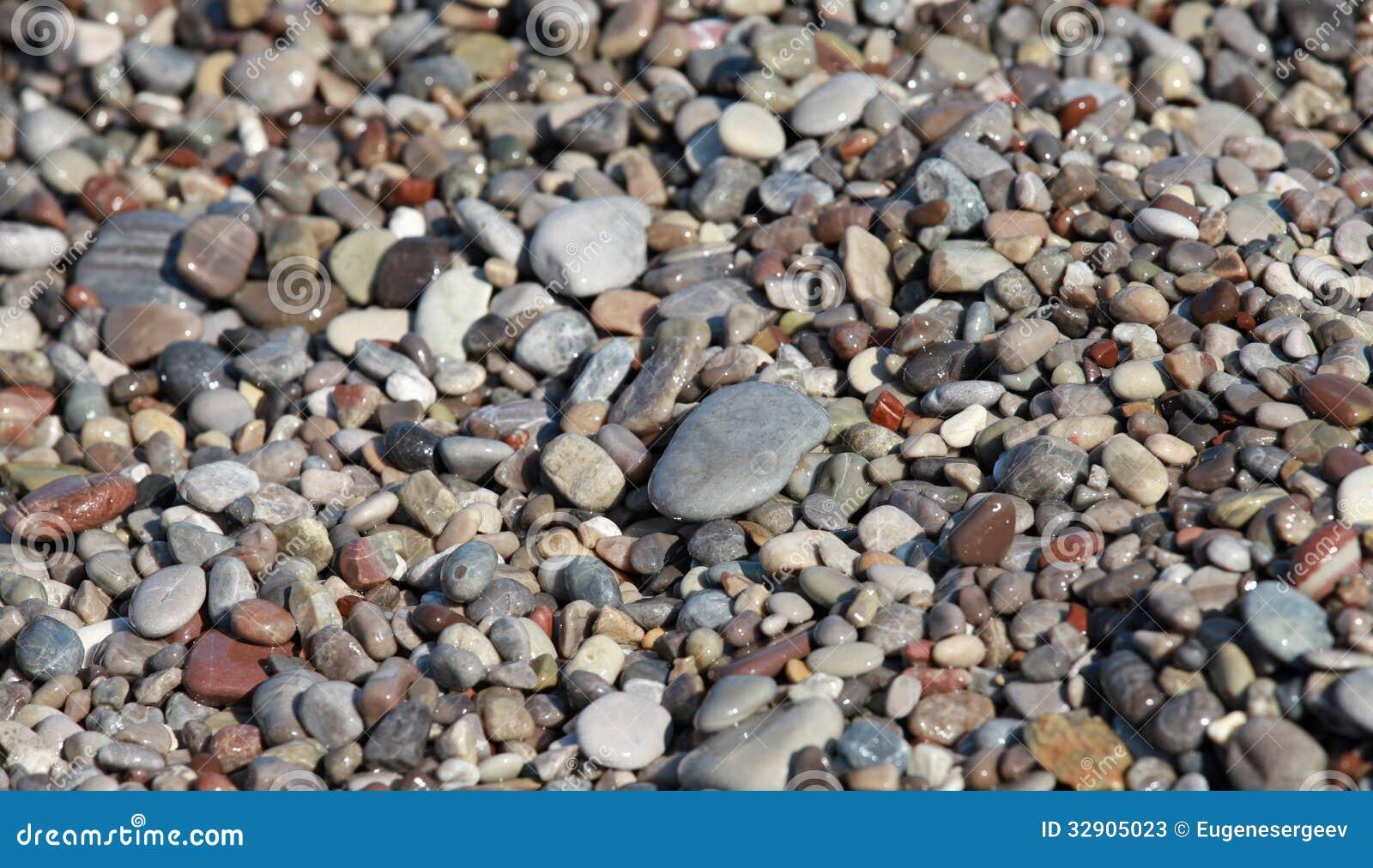 Pedras coloridas litorais do mar molhado