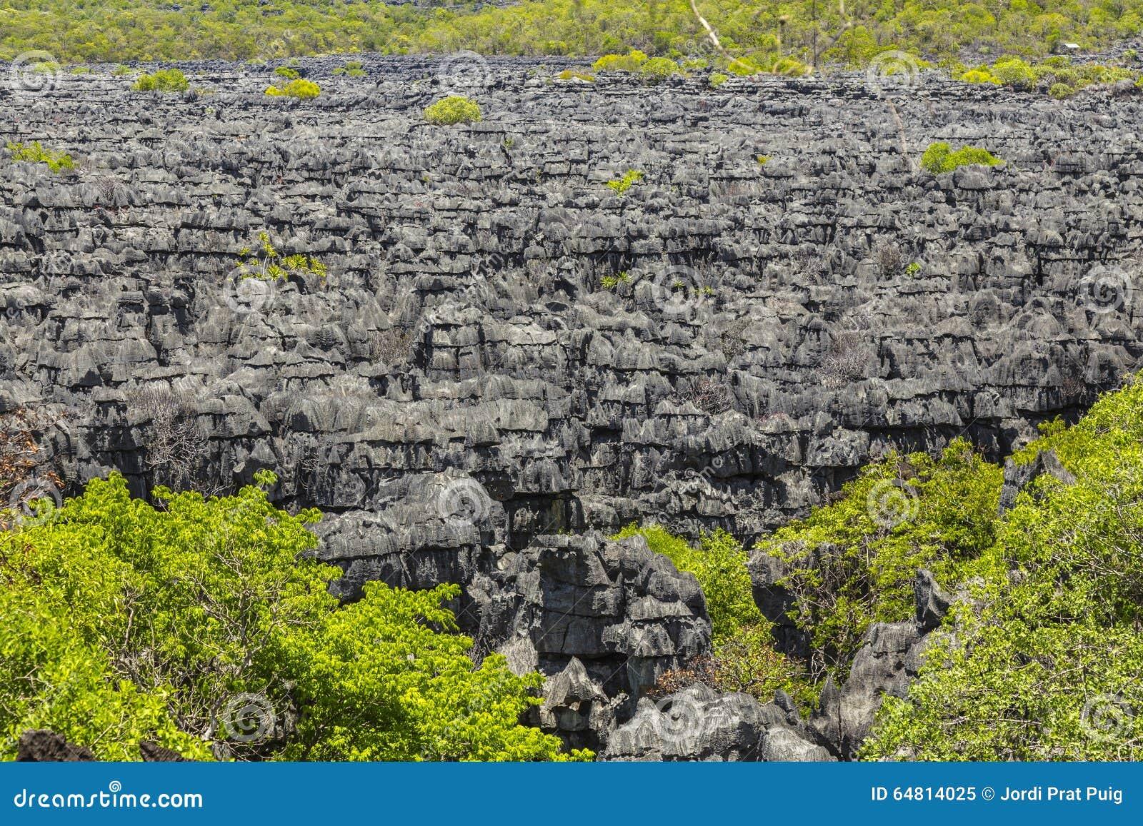Pedras de Ankarana Tsingy, marco do norte de Madagáscar