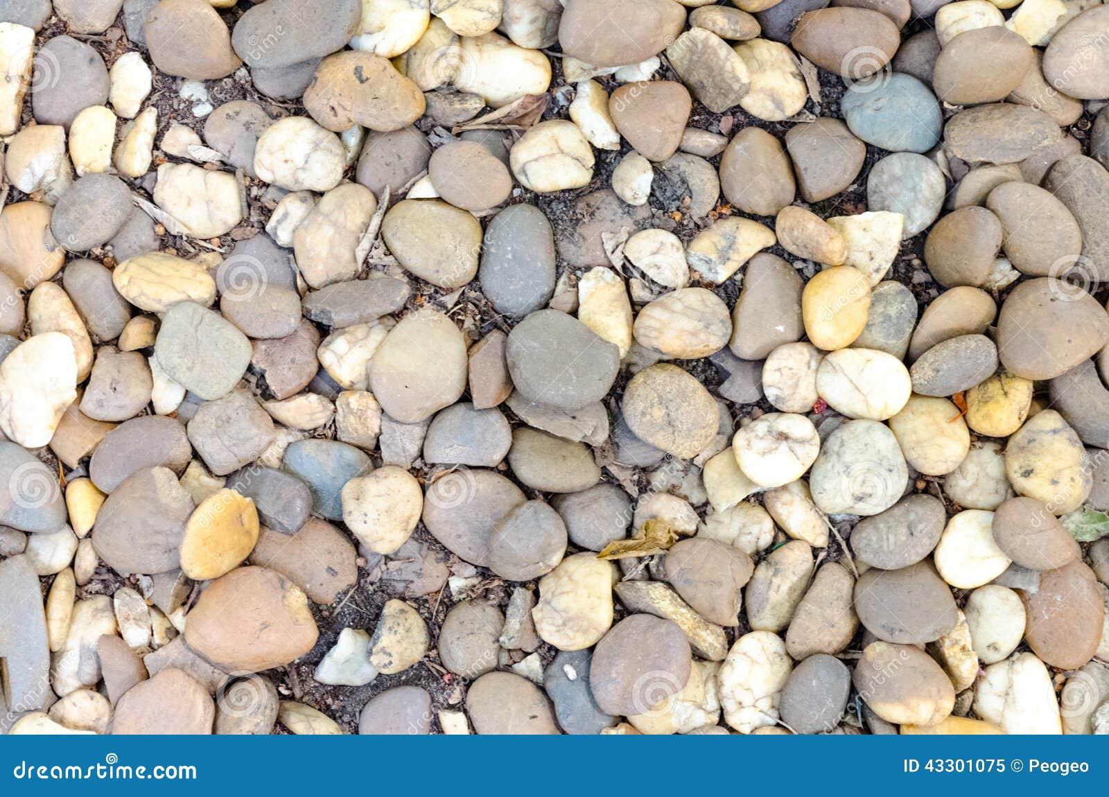 Pedras Decorativas Do Seixo Do Cascalho No Jardim Foto De