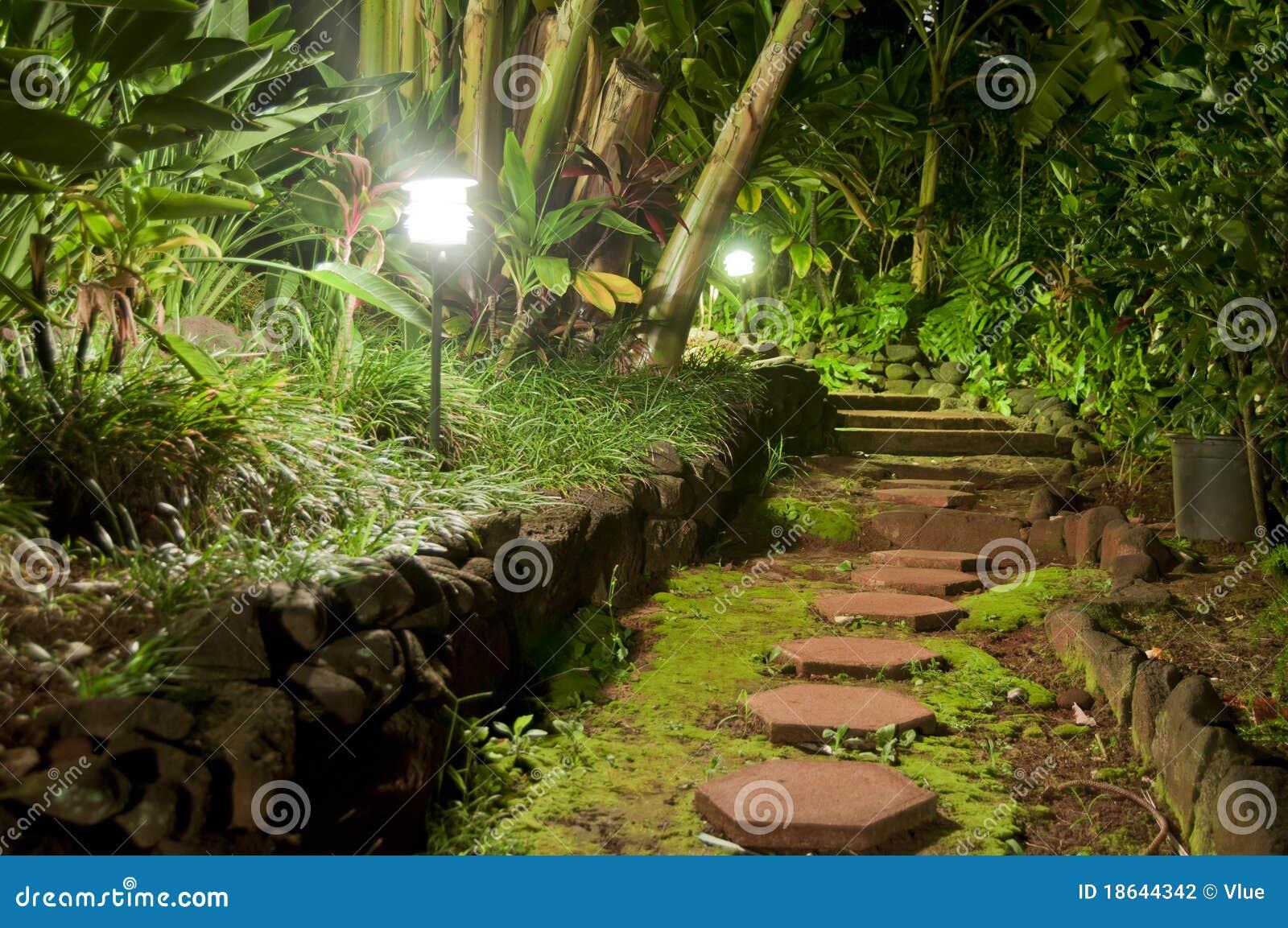 pedra jardim caminho:Garden Pathway at Night