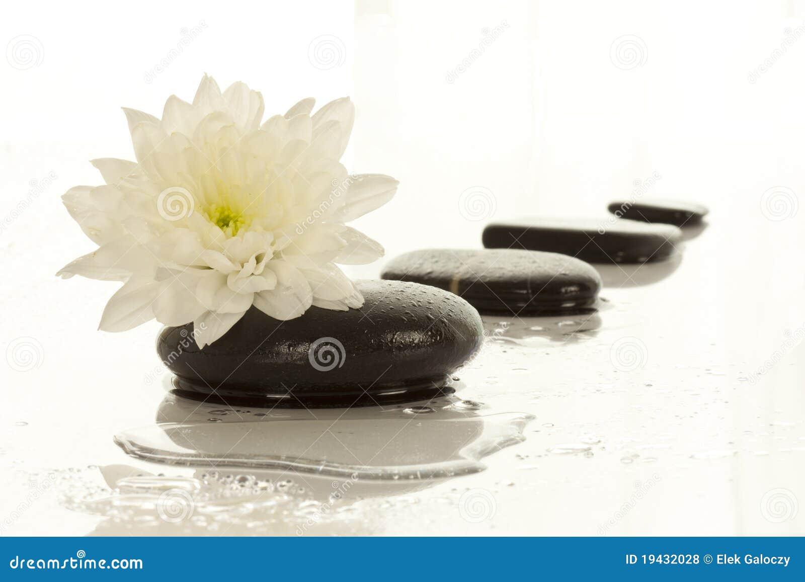 Pedras e flor dos termas