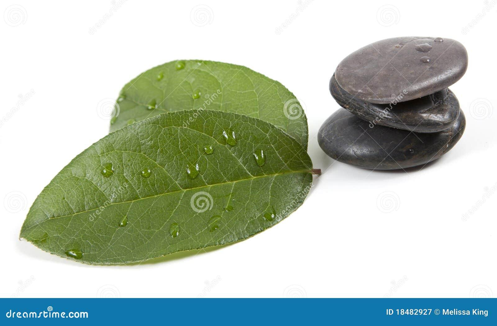 Pedras e folhas do zen com água