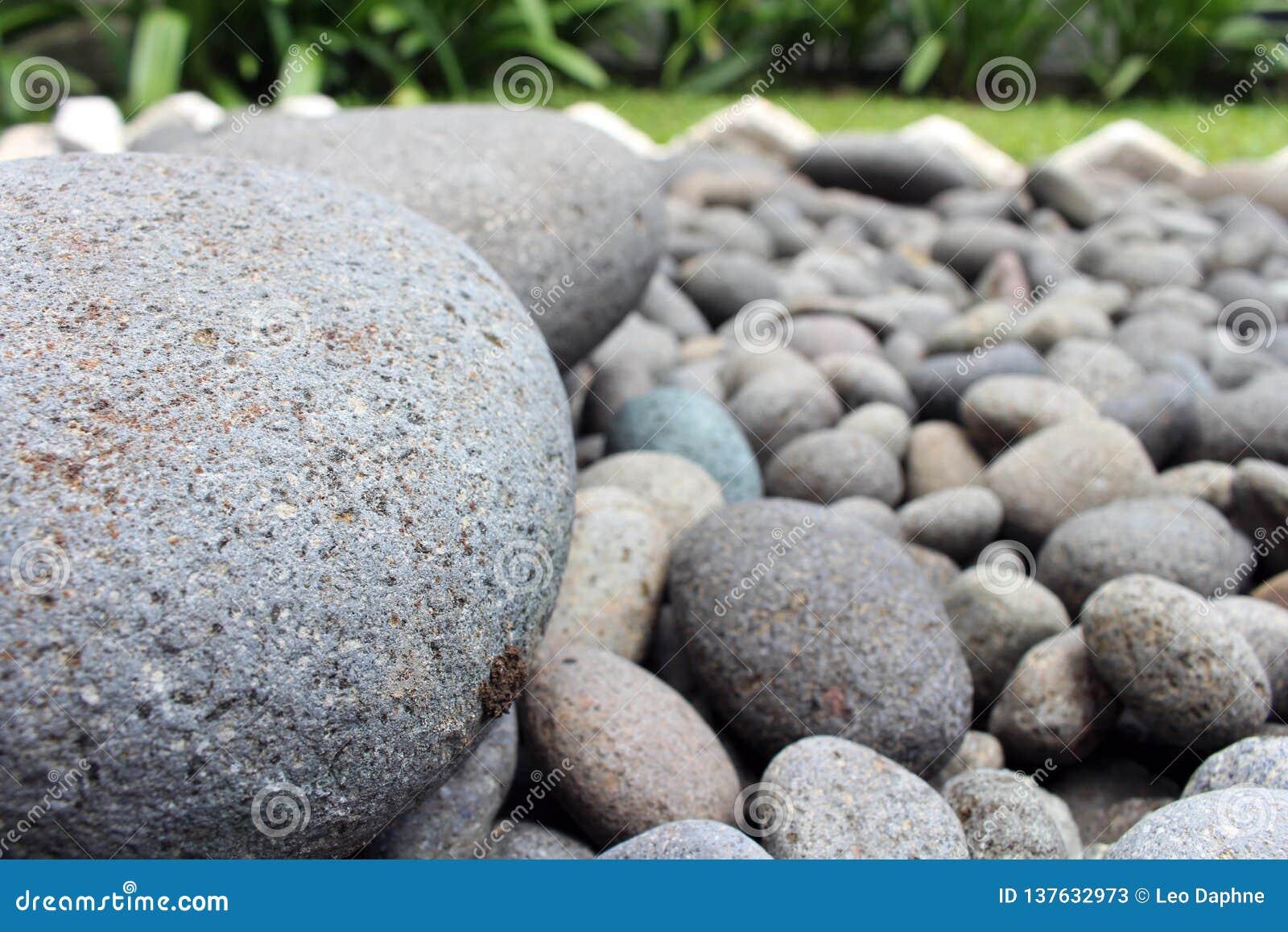 Pedras grandes entre seixos menores, no jardim