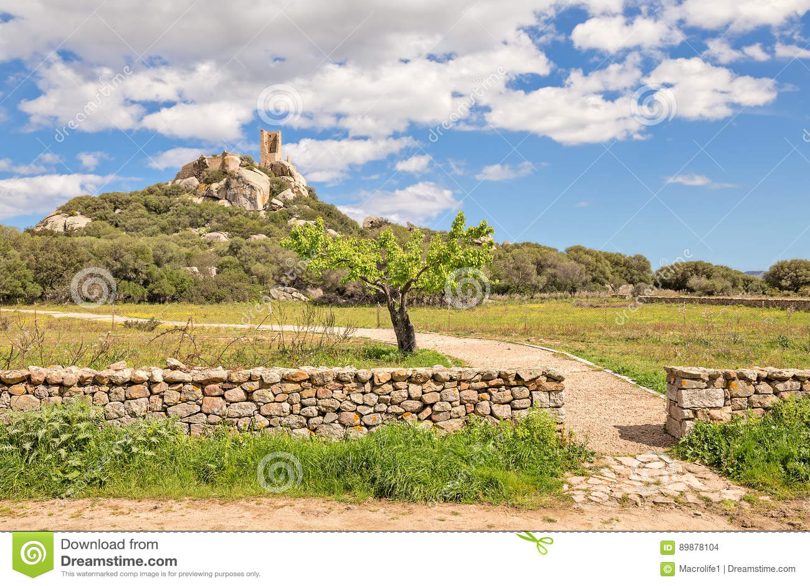 Pedres -奥尔比亚撒丁岛城堡