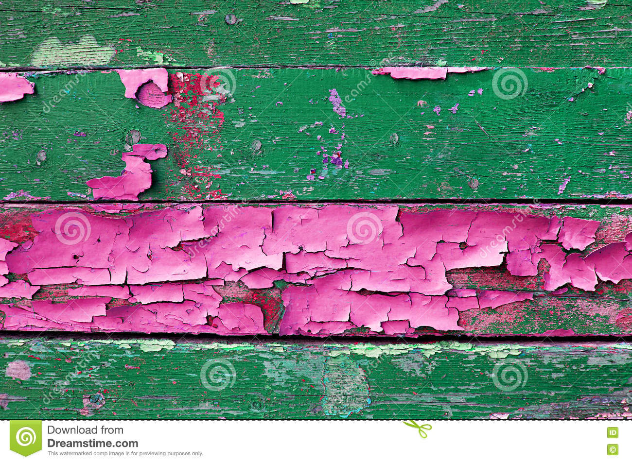 Peeling paint on old weathered wood with peeling paint of green and pink colors- textured wooden background