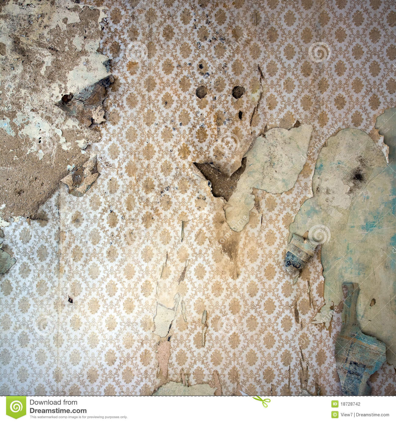 Peeling Wallpaper, Damaged Wal