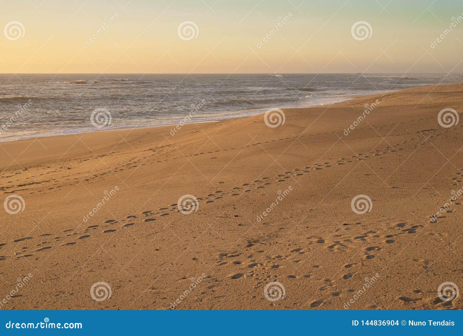 Pegadas na praia vazia