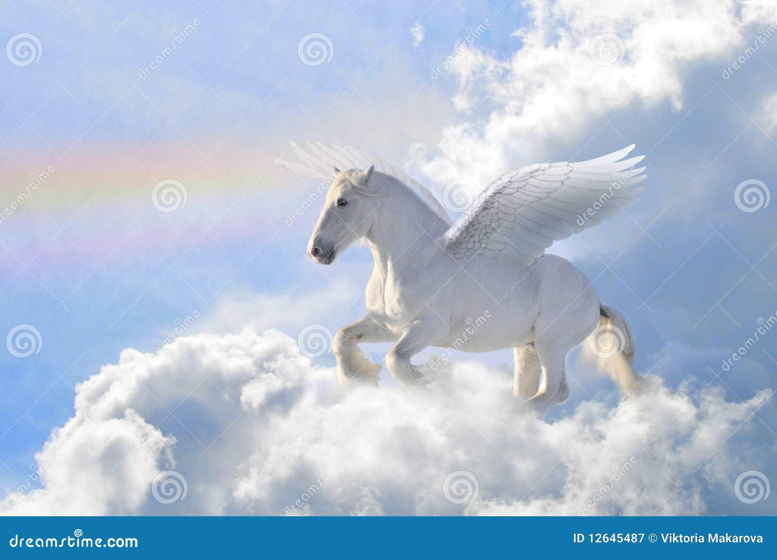 Pegasus en las nubes