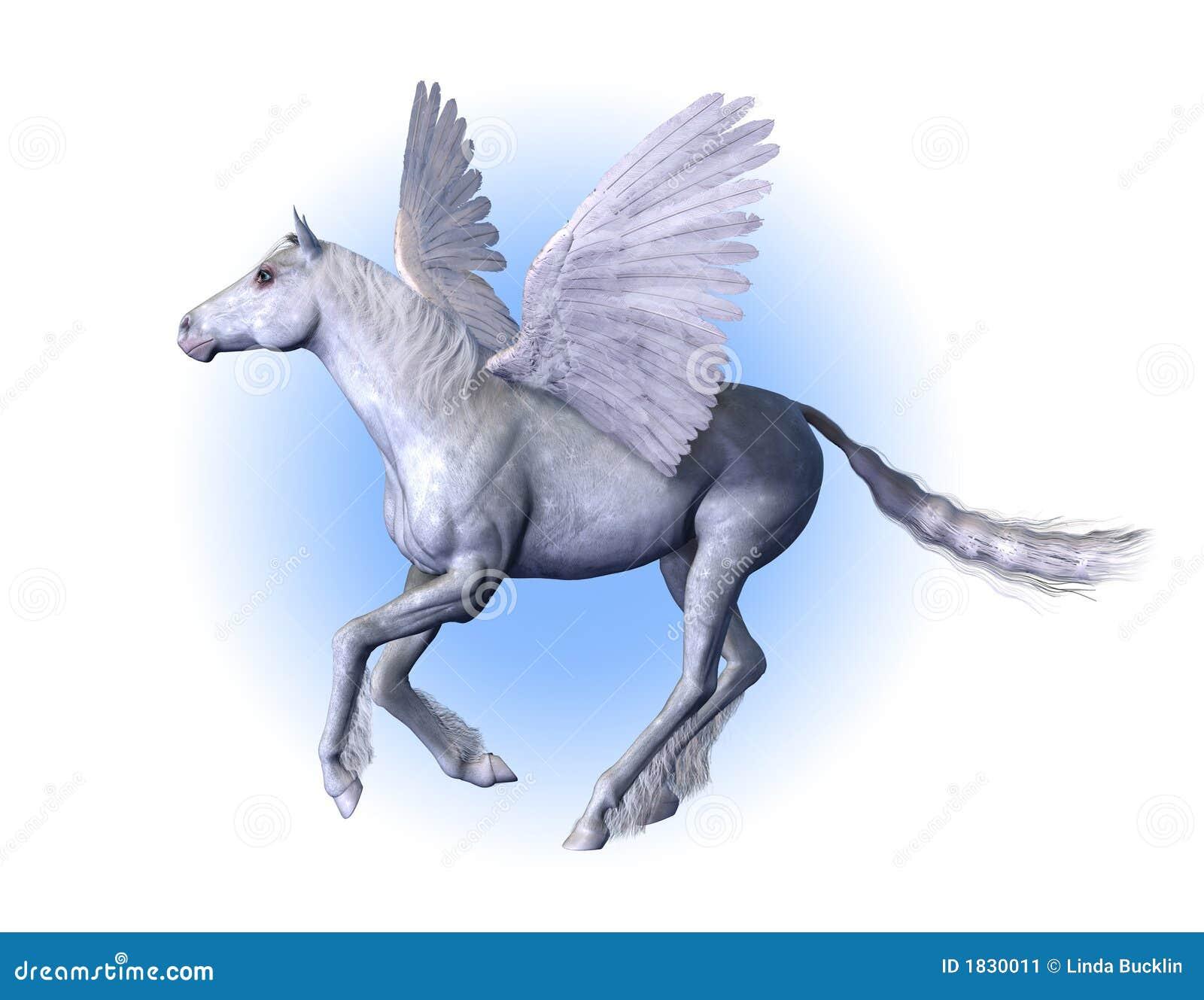 Pegasus Gevleugeld Paard Stock Afbeelding Afbeelding