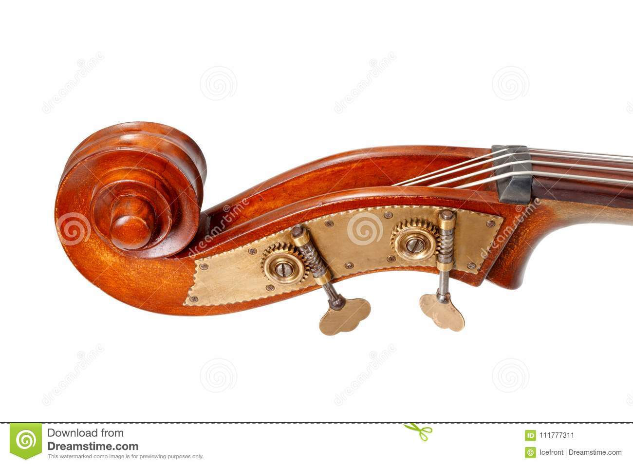Pegbox, scroll and tuning keys of a contrabass