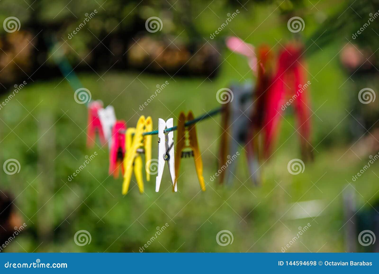 Pegs de roupa coloridos na linha