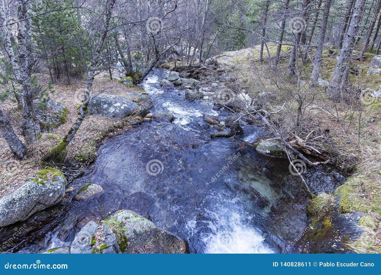 Peguera flod, nationalpark av Aigà ¼estortes I Estany de Sant Maurici