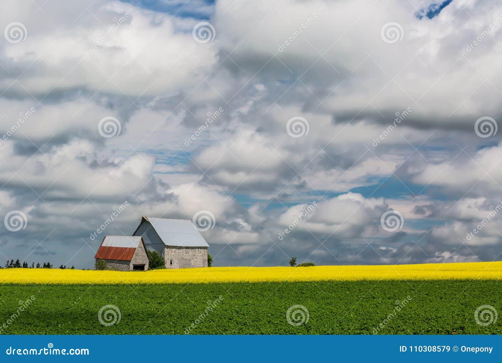 PEI Rural Farmland