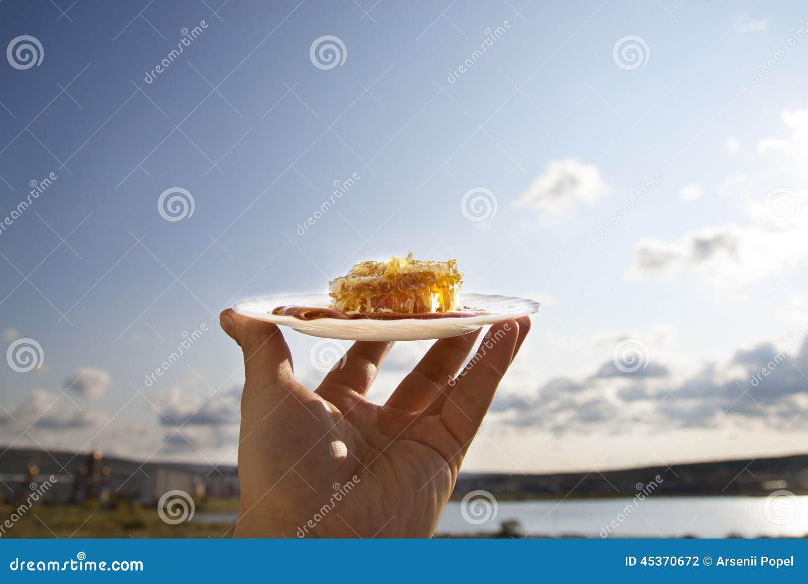 Peigne de miel sur une soucoupe blanche