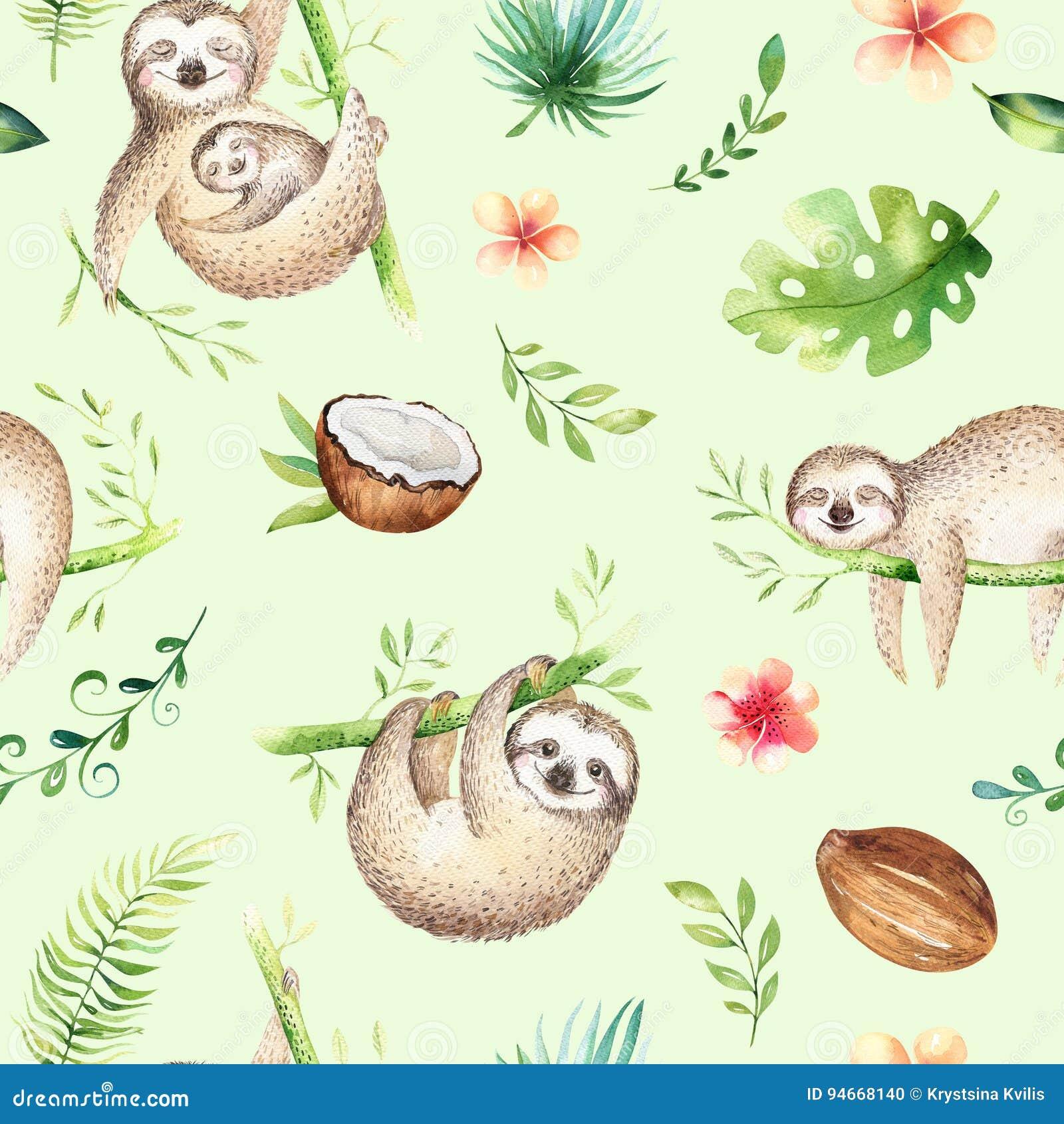 Peinture sans couture de modèle de crèche de paresse d animaux de bébé Dessin tropical de boho d aquarelle, dessin tropical d enf
