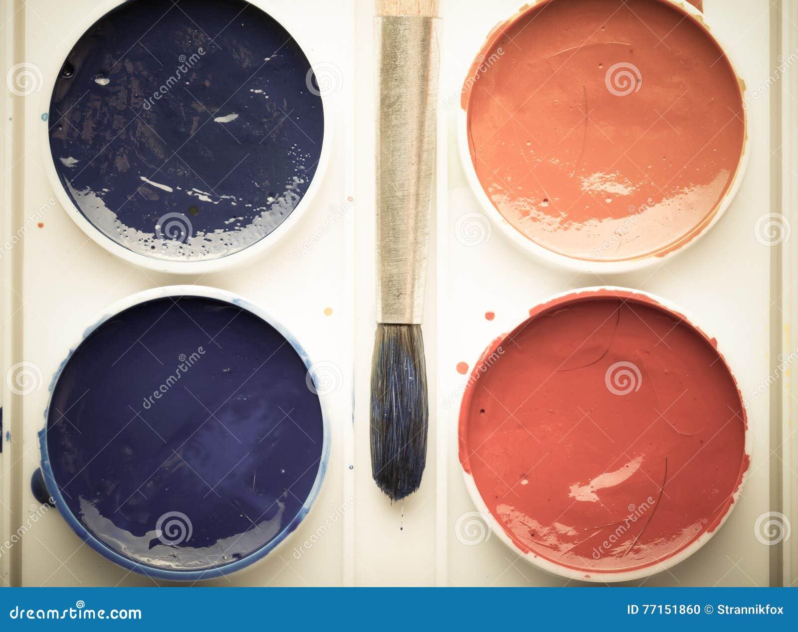 Peintures colorées d aquarelle dans la palette avec la brosse toned