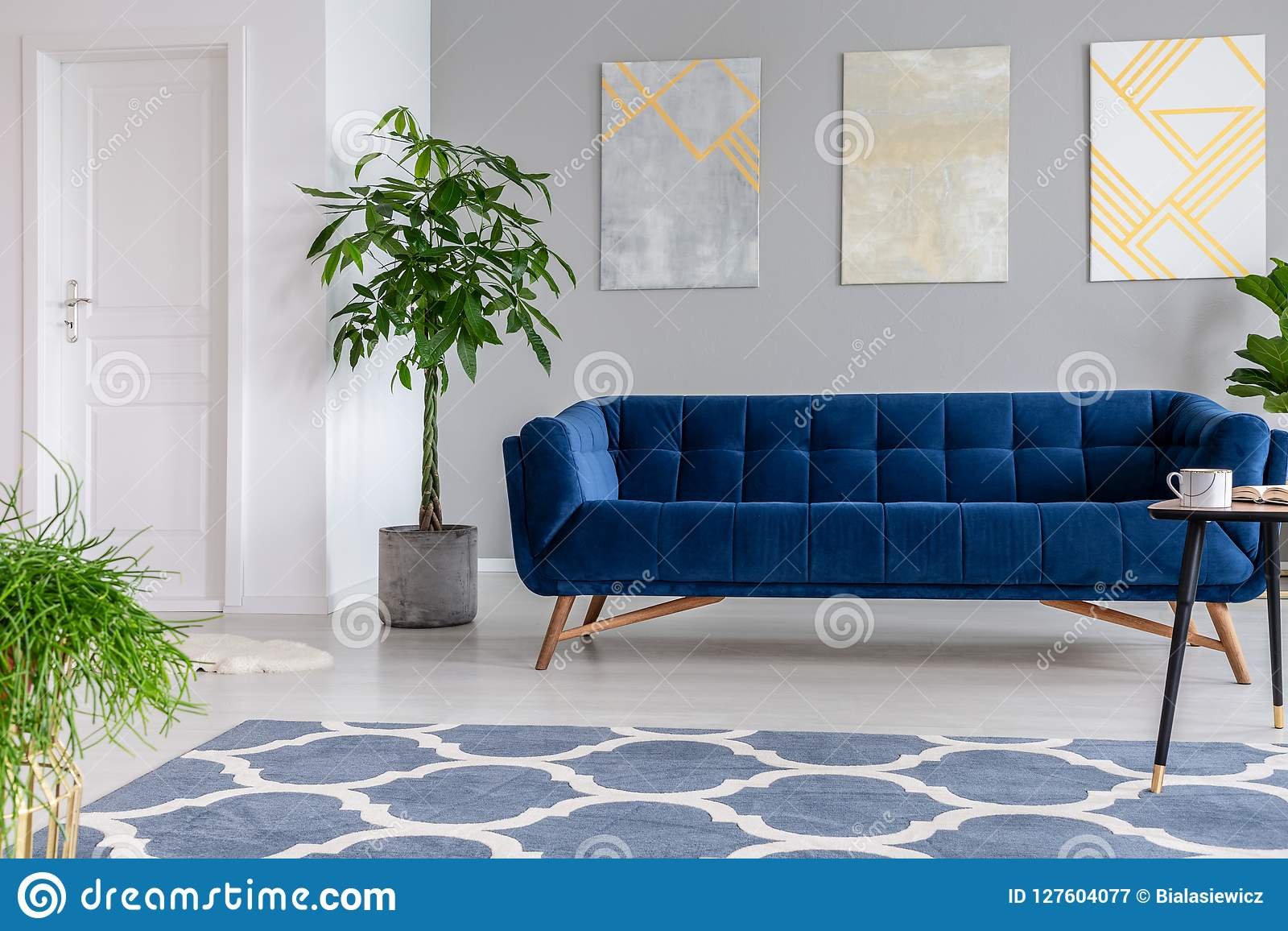 Peintures graphiques sur un mur gris derrière un divan bleu-foncé de velours de luxes dans un intérieur élégant de salon avec des