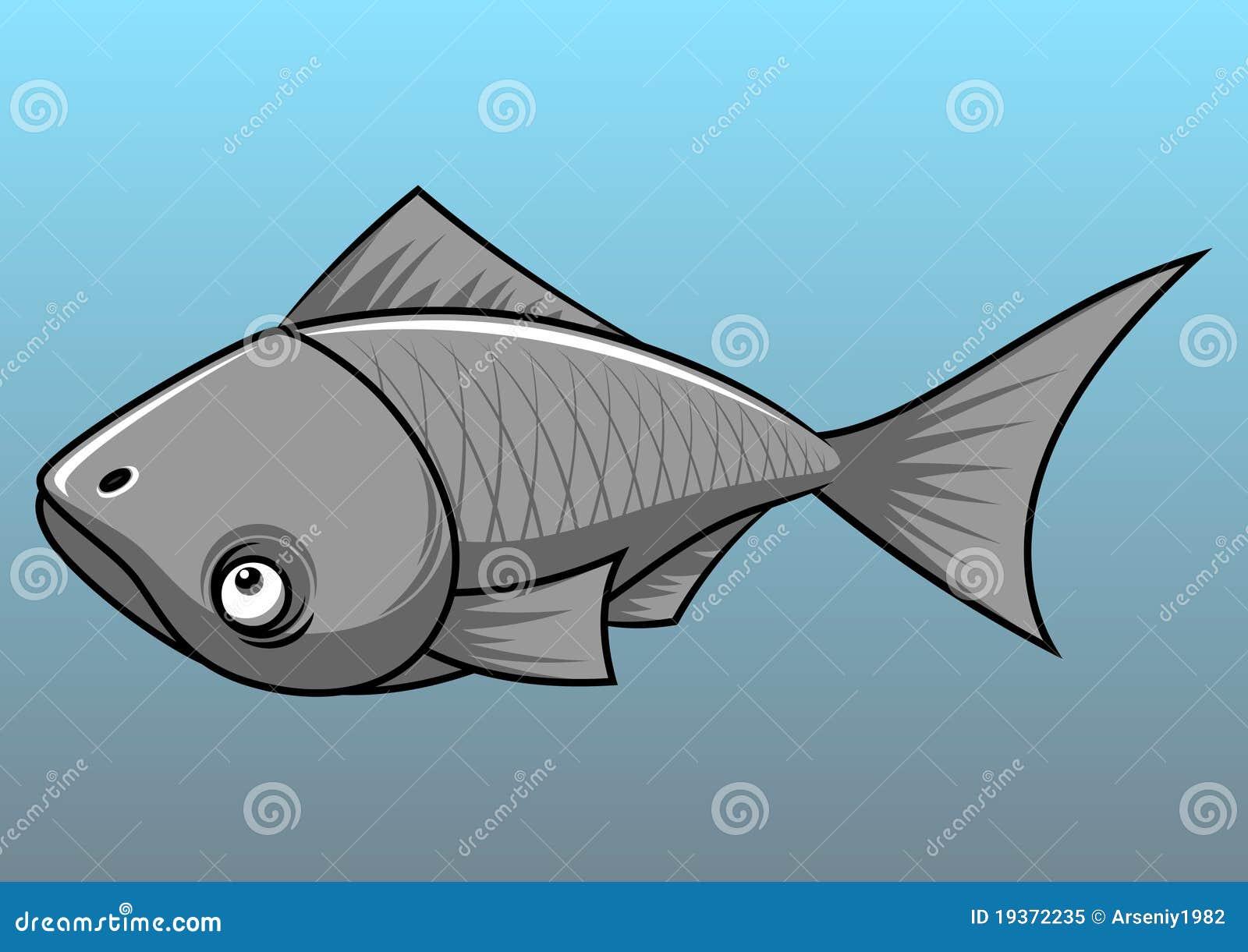 Peixes cinzentos