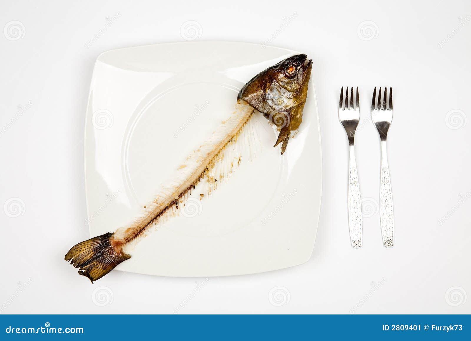 Peixes comidos