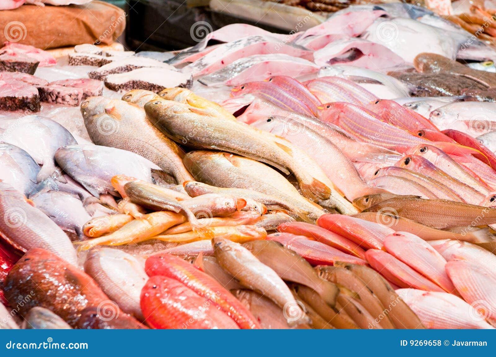 Peixes frescos em um mercado de peixes fotos de stock for Fountainview fish market