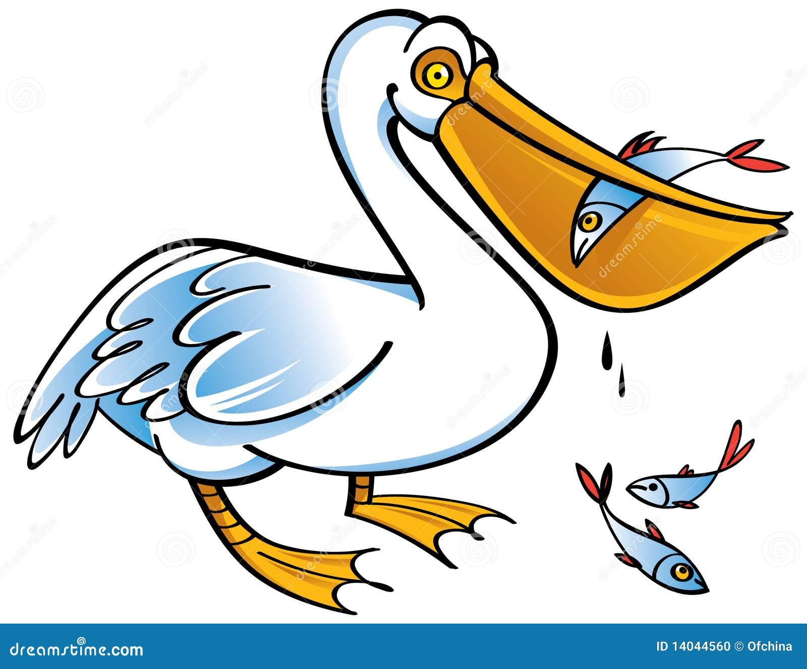 Pel cano foto de archivo imagen 14044560 - Fotos de pelicanos ...