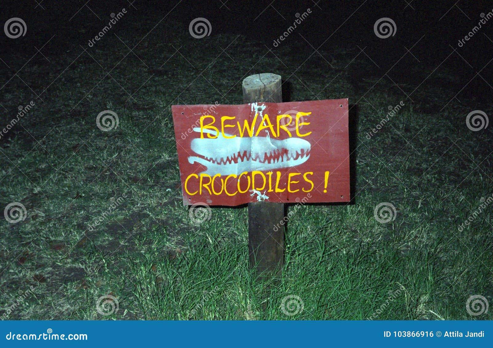 Peligro de Croc, Kasane, Botswana