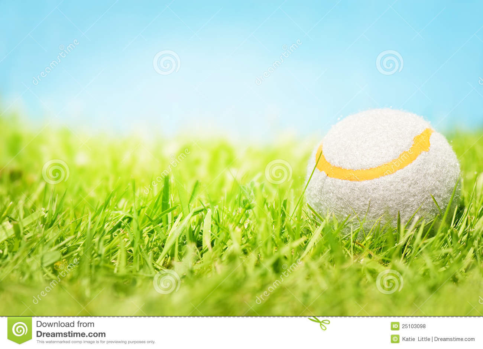 Pelota de tenis en hierba