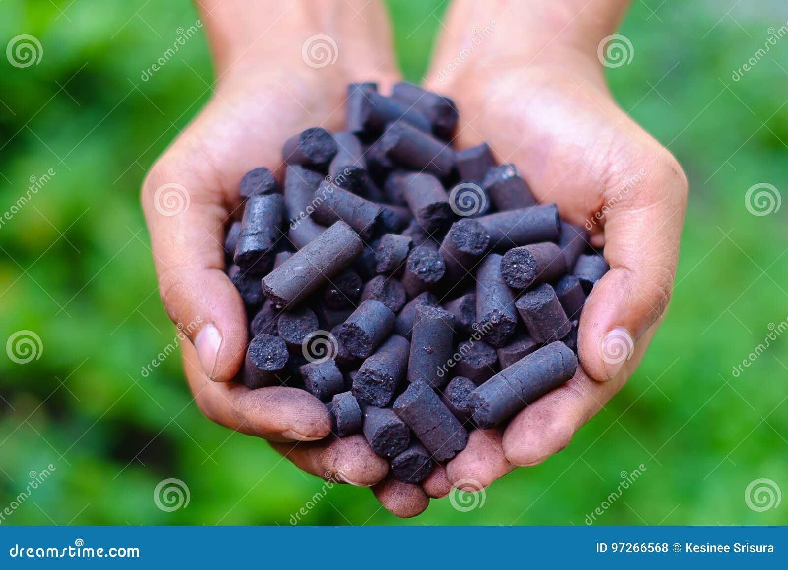 Pelotilla del carbón en manos del ` s del trabajador