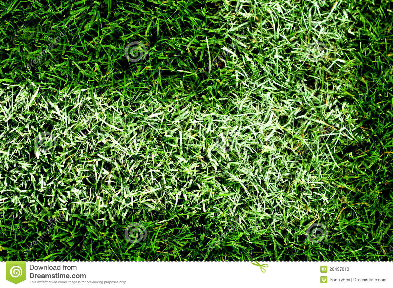 Pelouse Artificielle De Terrain De Football Photo Stock