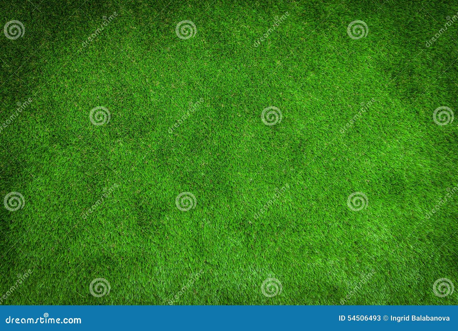 Pelouse verte pour le fond
