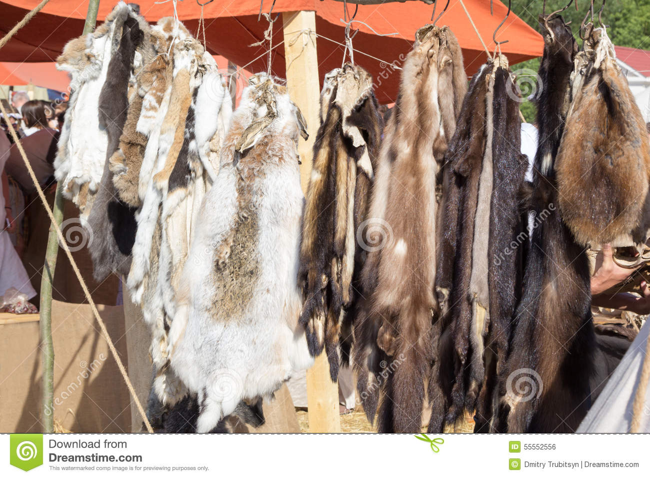 Pelts of fur animals hang on rope