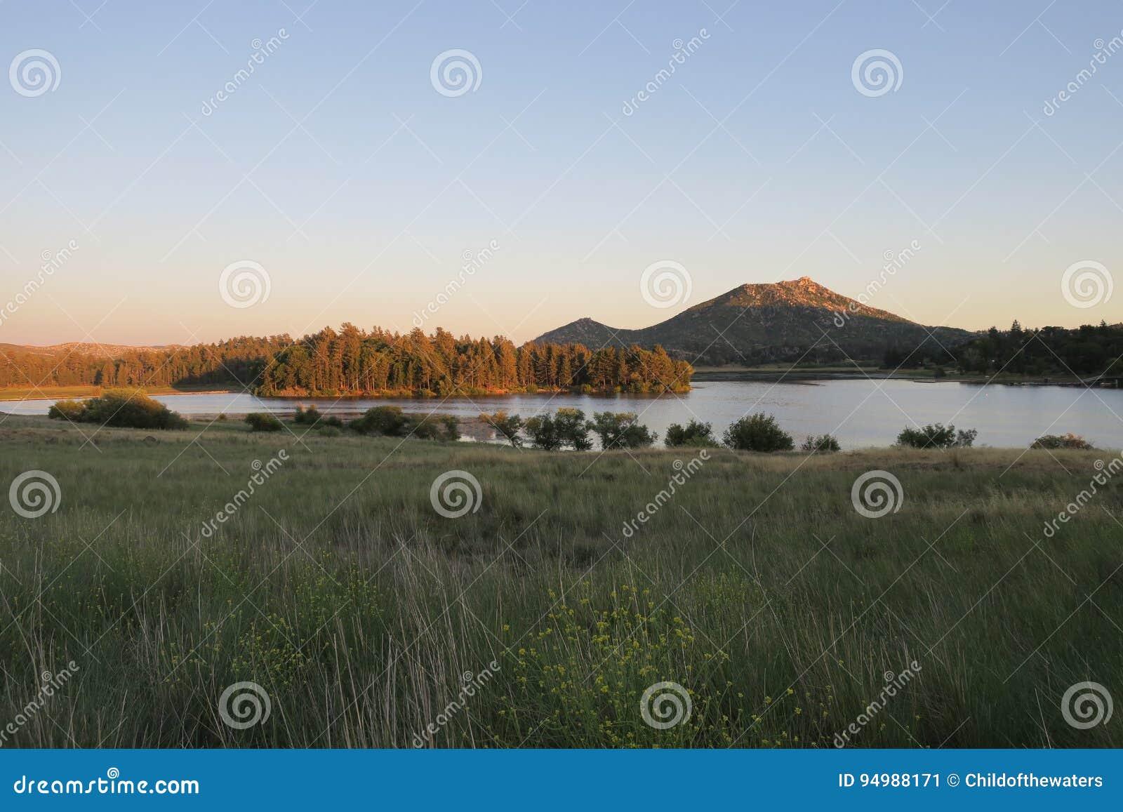 Península do bosque da montanha e do pinho acima do lago Cuyamaca
