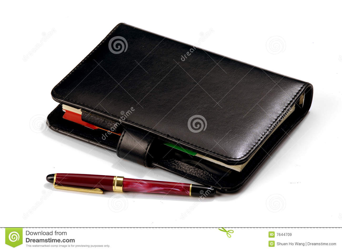 Pen and diary