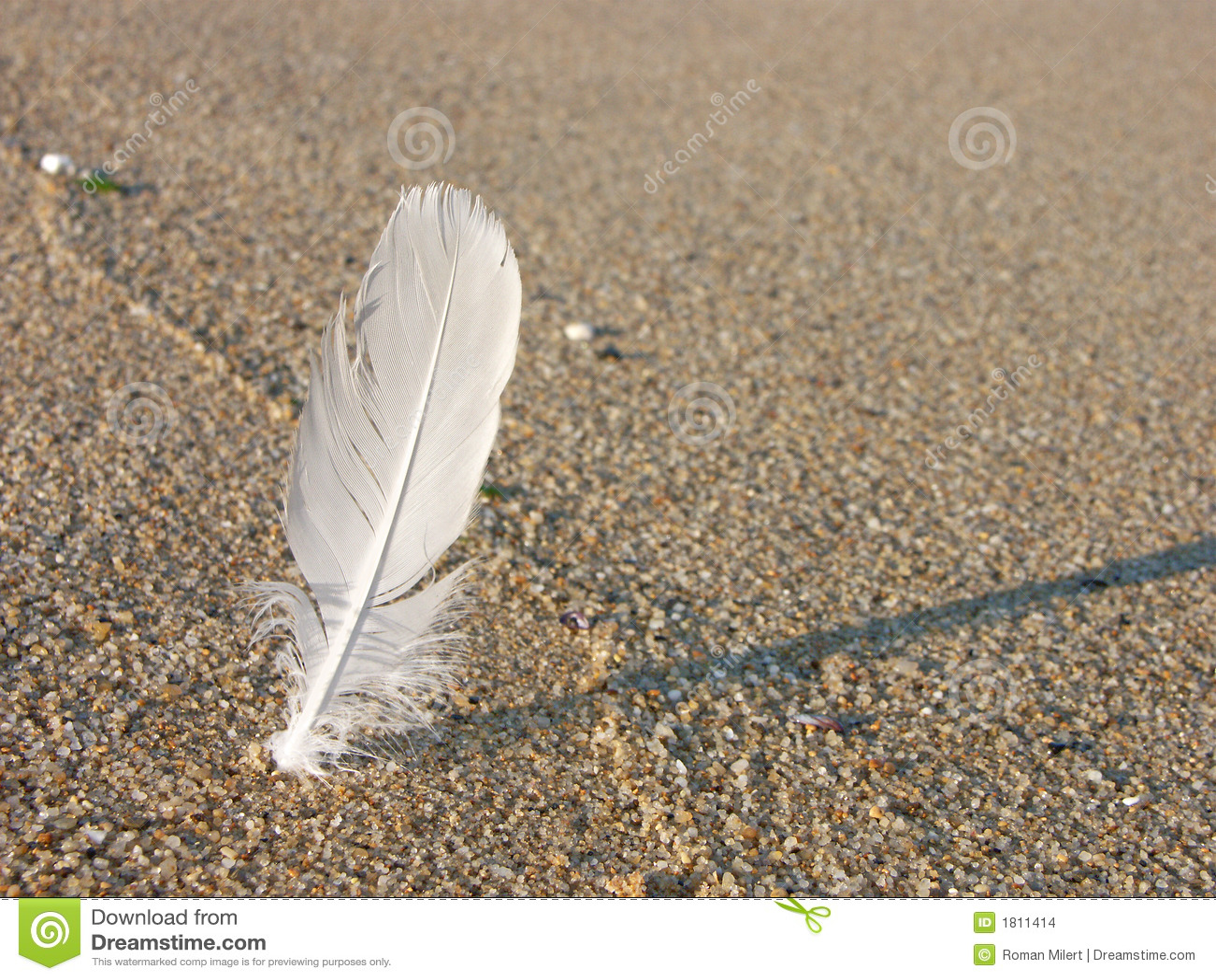 Pena branca na areia