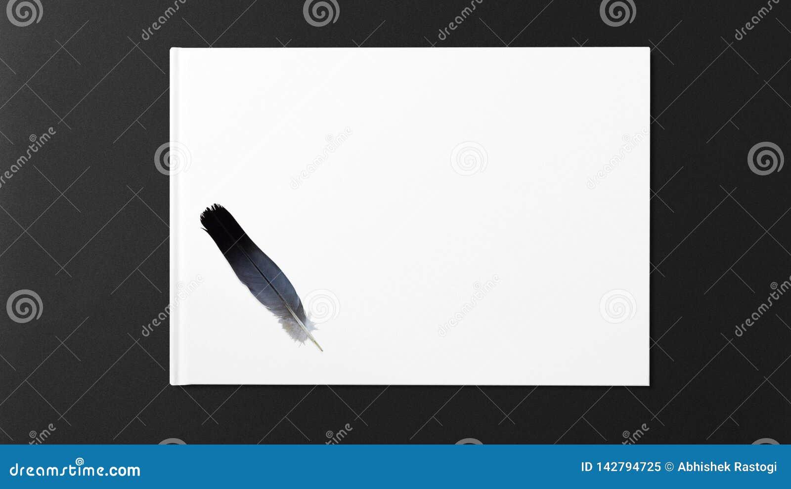Pena de p?ssaro que encontra-se em um Livro Branco