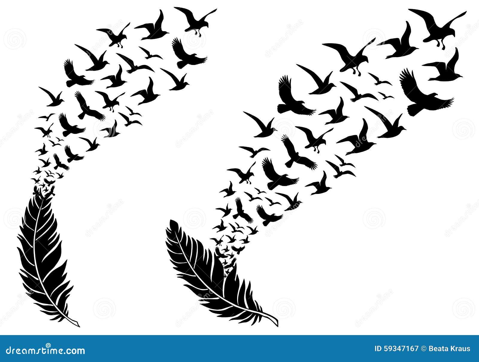 penas com p u00e1ssaros de voo  vetor ilustra u00e7 u00e3o do vetor