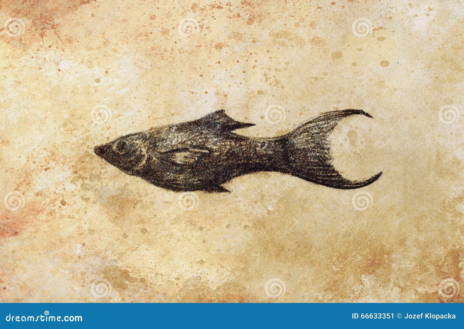The pencil drawing aquarium fish on old paper stock illustration