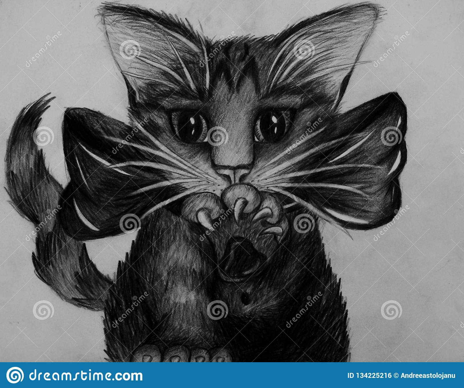 Pencil drawing of a cute little cat with sharp claws and a big bow in black and white artistic portrait of pretty puppy with big eyes hand drawn of a pet